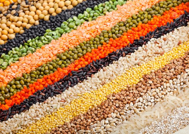 23546750-colorful-striped-rows-of-dry-lentils-soya-beans-grain-peas-groats-buckwheat-soybeans-legumes-rice-ba-Stock-Photo